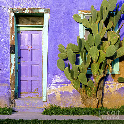 Entrance Door Photograph - El Barrio by Timm Chapman