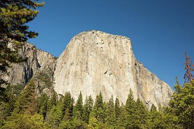 El Capitan Photograph - El Capitan by Ashley Cooper
