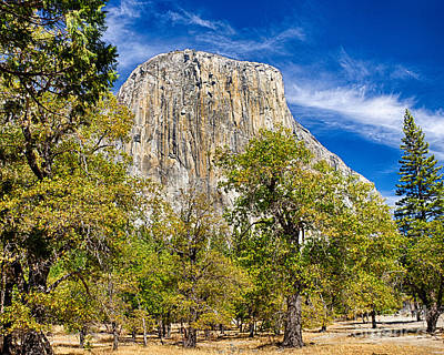 Photograph - El Capitan by David Doucot