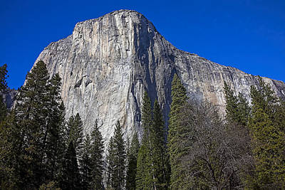 El Capitan Photograph - El Capitan by Garry Gay