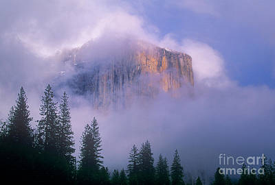 Photograph - El Capitan In Fog Yosemite National Park California by Dave Welling