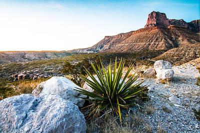 El Capitan In Guadalupe Mountains In The Evening Light Art Print