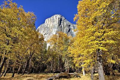 Photograph - El Capitan In November by Gordon Elwell