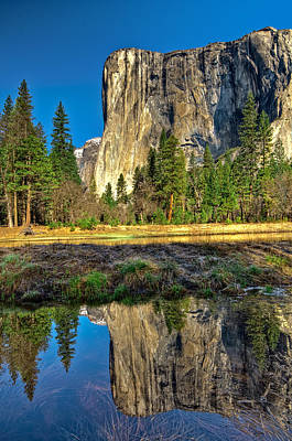Photograph - El Capitan by Maria Coulson