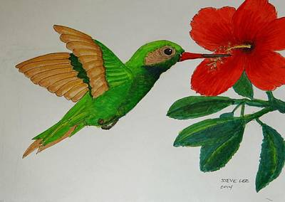 Colibri Painting - El Colibri by Steven Tomsik