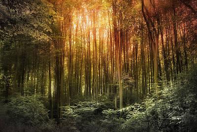 Photograph - El Paradiso Mio - Awakening Spiritual Landscape by Danuta Antas Wozniewska