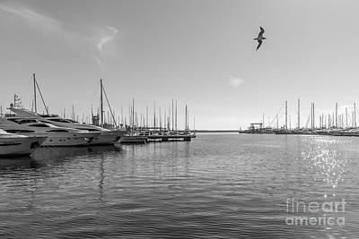 Photograph - El Puerto by Eugenio Moya