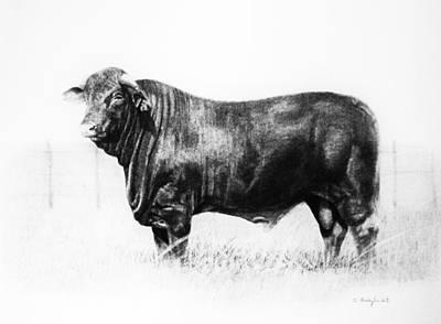 Art Print featuring the drawing El Santa Gertrudis by Noe Peralez