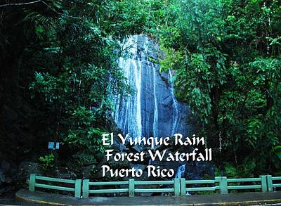 Photograph - El Yunque  Waterfall by Gary Wonning
