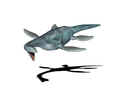 Plesiosaur Photograph - Elasmosaurus Dinosaur by Friedrich Saurer