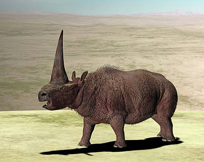One Horned Rhino Photograph - Elasmotherium by Friedrich Saurer
