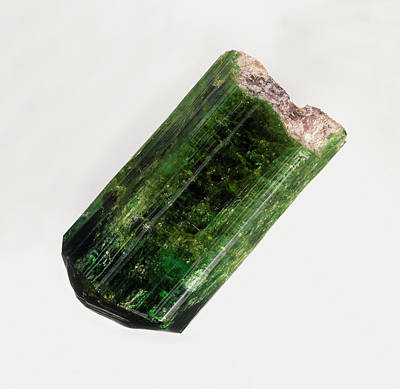 Tourmaline Photograph - Elbaite Mineral (tourmaline) by Dorling Kindersley/uig