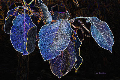 Photograph - Electric Leaves by Joanne Smoley