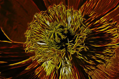 Electric Poppy Art Print by Photographic Art by Russel Ray Photos
