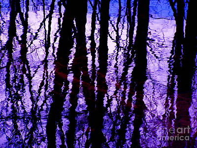 Photograph - Electric Purples by Carolyn Kami Loughlin