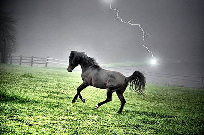 Lightning Photograph - Electric Stallion by Emily Stauring