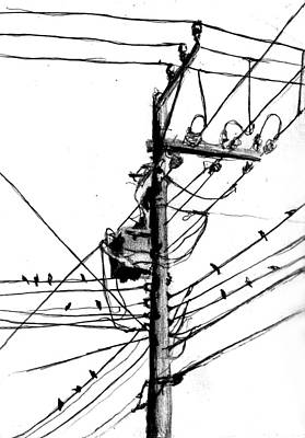 Electricity Drawing - Electrical Pole With Birds by Di Fernandes