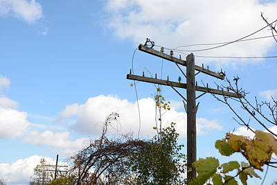 Electricity Photograph - Electricity Post2 by Mirek Bialy