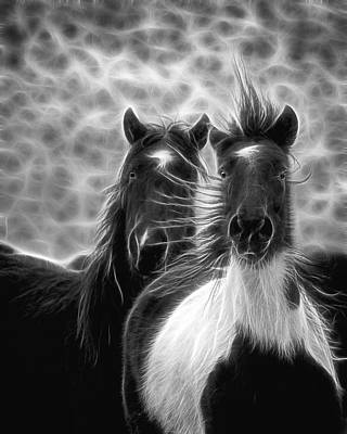 Forelock Photograph - Electrified And Wild by Wes and Dotty Weber