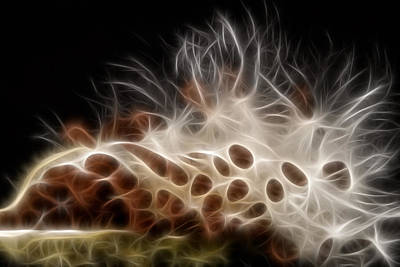 Electrifying  Art Print
