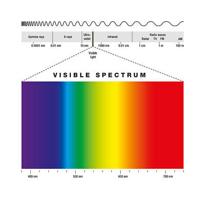 Electromagnetic Spectrum And Visible Light Art Print