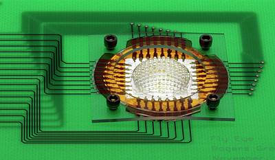 Electronics Photograph - Electronic Compound Eye Camera by Professor John Rogers, University Of Illinois