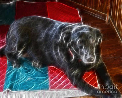 Electrostatic Dog And Blanket Art Print by Barbara Griffin
