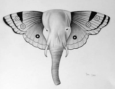 Elefly Art Print by Katrina Botell