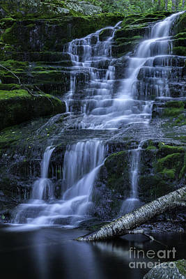 Elegant Cascades Of Falls Brook  Art Print by Thomas Schoeller
