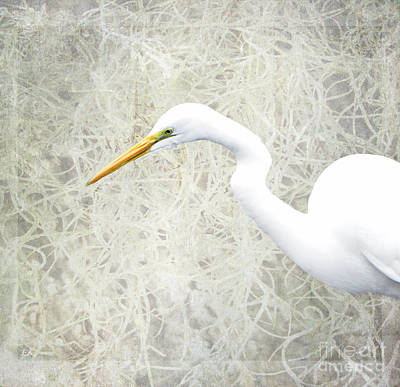 Believe Digital Art - Great White Egret - Home Nature Decor Series by Ella Kaye Dickey