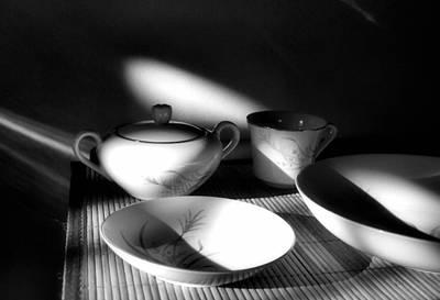 Photograph - Elegant by Tom Druin