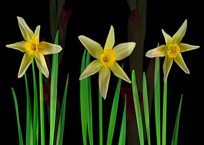 Mixed Media - Elegant Yellow Flowers On Green Shoots by Navin Joshi