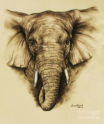 Elephant 2 Art Print by Anastasis  Anastasi