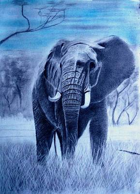 Drawing - Elephant And Blue Sky by Derrick Parsons