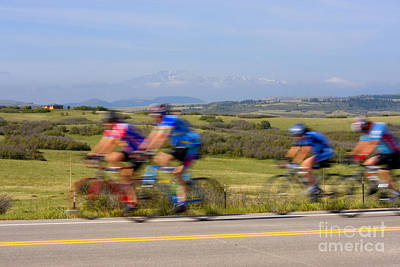 Steven Krull Royalty-Free and Rights-Managed Images - Elephant Century Ride by Steven Krull