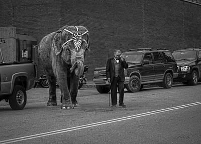 Photograph - Elephant Crossing by Bob Orsillo