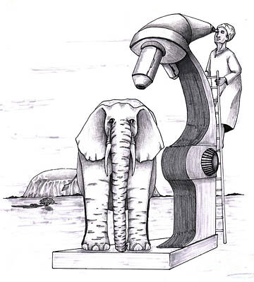 Animals Drawings - Elephant examined under huge microscope outside by Lee Serenethos