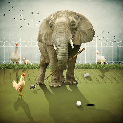 Photograph - Elephant Golf by Ethiriel  Photography