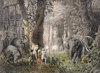 Elephant Hunt In The Region Of Logalla Print by Graf Emanuel Andrasy