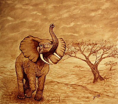 Painting - Elephant Majesty Original Coffee Painting by Georgeta  Blanaru