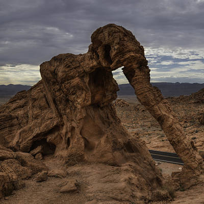 Valley Of Fire Photograph - Elephant Rock by Calvin Jennings