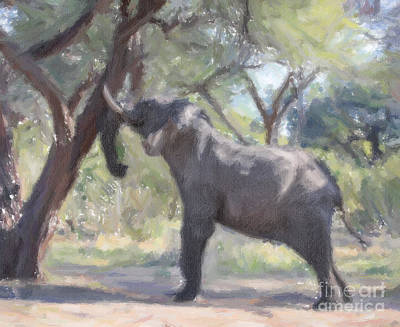 Africa Digital Art - Elephant Shaking Seeds From Tree by Liz Leyden