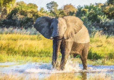 Digital Art - Elephant Splash by Liz Leyden