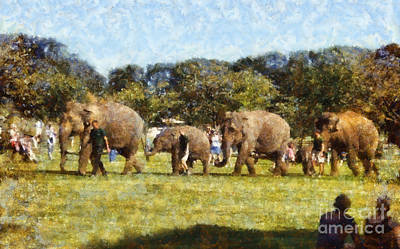 Home Gift Photograph - Elephant Train  by Pixel  Chimp