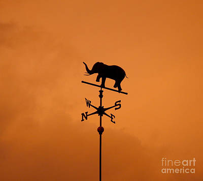 Photograph - Elephant Weathervane Sunset by Glenn Gordon