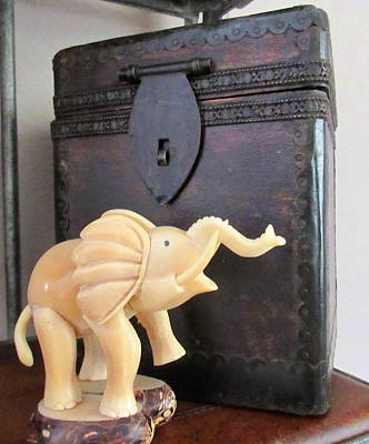 Photograph - Elephant With Elephant Box by Ashley Goforth