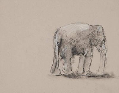 Elephant Charcoal Study #1 Art Print