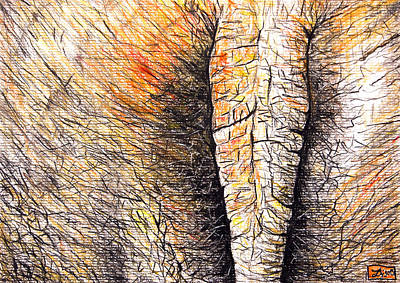 Elephant's Bottom Original by Daniel Janda