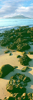 Elevated View Of Rocks On The Beach Art Print