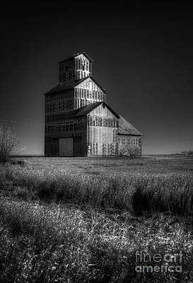 Photograph - Elevator At Burns Ks by Fred Lassmann